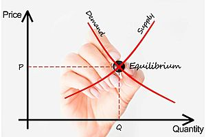 reality gets in the way: the trouble with demand curves