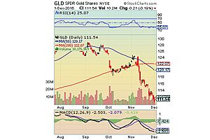 Has Gold Finally Bottomed?