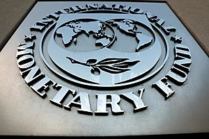 IMF: Governments Have Wasted 2 Great Economic Years, Failed to Fix Structural Problems