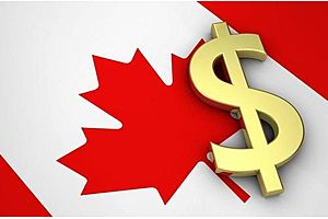 Canadian Citizens Going Bankrupt at Alarming Speed: 16% Increase in 1 Month