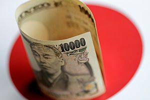 Japan Ready to Pursue Flexible Fiscal Policy to Offset Economic Risks
