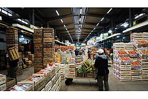 Food Prices Soar in Argentina as Peso Devalues
