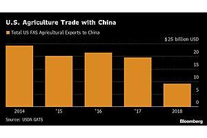 Trump's China Handshake Fails to Lift Economic Gloom