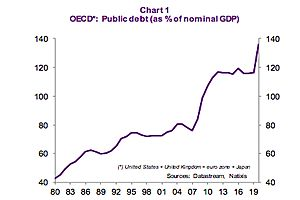 What Accounts for the Sharp Rise in the Public Debt Ratio in OECD Countries?: Natixis