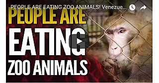 People Are Eating Zoo Animals!